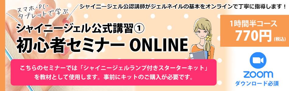 初心者セミナーオンライン