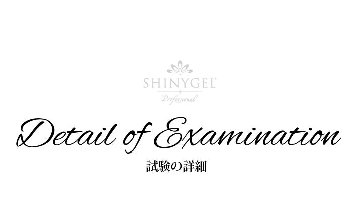 シャイニージェル各試験の詳細